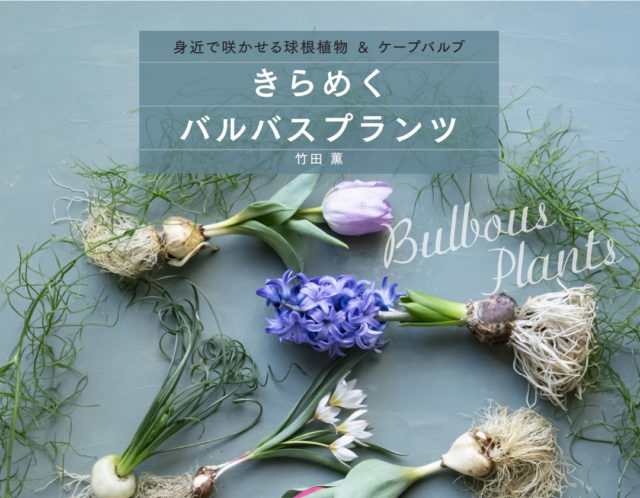 竹田薫著 『きらめく バルバスプランツ』