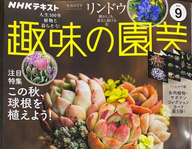 趣味の園芸2021年9月号(NHKテキスト)